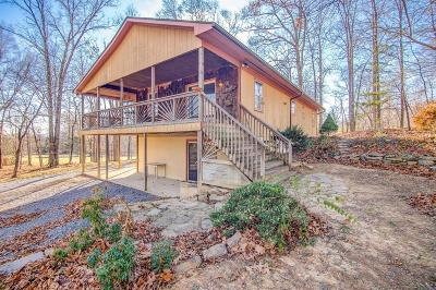 Botetourt County, Roanoke County Single Family Home For Sale: 995 Lees Gap Rd