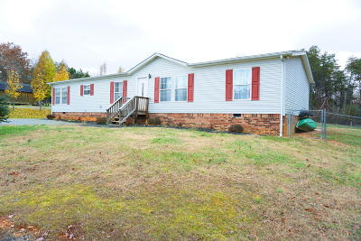Moneta Single Family Home For Sale: 85 Harbor Landing Dr