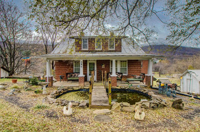 Blue Ridge Single Family Home For Sale: 296 Archway Rd