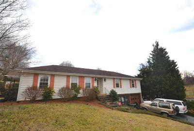 Roanoke Single Family Home For Sale: 8113 Waterfall Dr