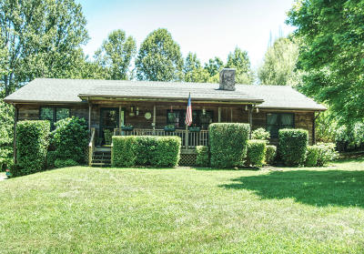 Bedford County Single Family Home For Sale: 112 Pleasure Point Dr