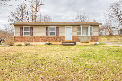 Rocky Mount Single Family Home For Sale: 175 Green Meadow Ln
