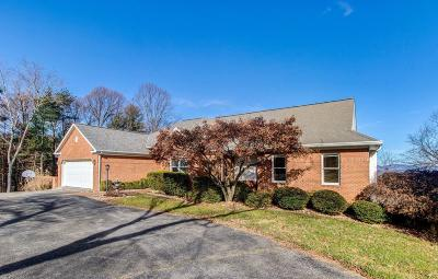 Roanoke Single Family Home For Sale: 6113 Wertz Orchard Rd