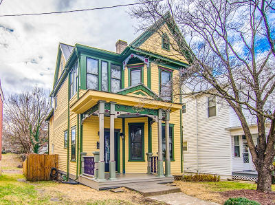 Roanoke Single Family Home For Sale: 368 Washington Ave SW