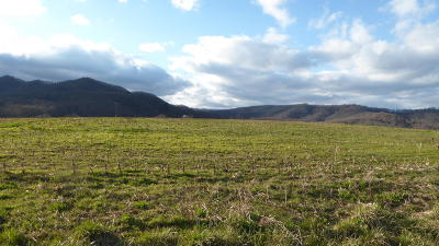 Franklin County Residential Lots & Land For Sale: 650 & 655 Crowell Gap Rd