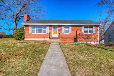 Roanoke City County Single Family Home For Sale: 102 Fleming Ave NE