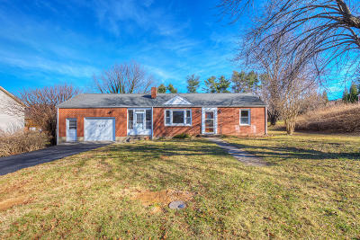 Roanoke County Single Family Home For Sale: 7377 Chester Dr