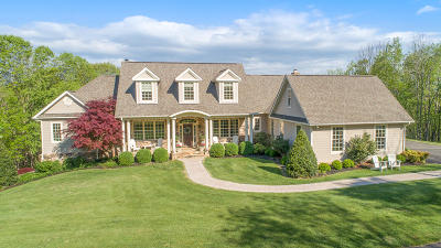 Botetourt County Single Family Home For Sale: 199 Wild Rose Way