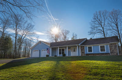 Single Family Home For Sale: 2065 Mountain Pass Rd