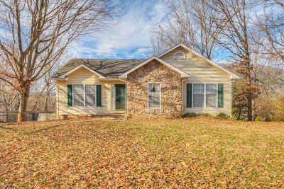 Botetourt County Single Family Home For Sale: 90 Chenault St