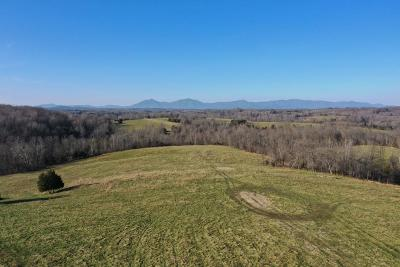 Bedford County Residential Lots & Land For Sale: Falling Creek Rd