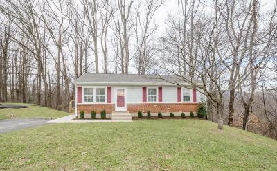 Vinton Single Family Home For Sale: 595 Stacie Dr