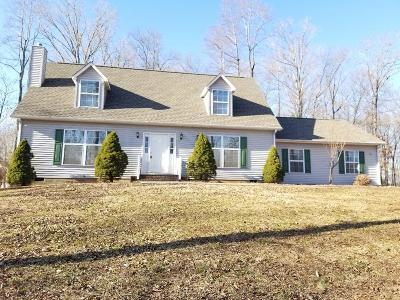 Bedford County Single Family Home For Sale: 229 Meadow Point Dr