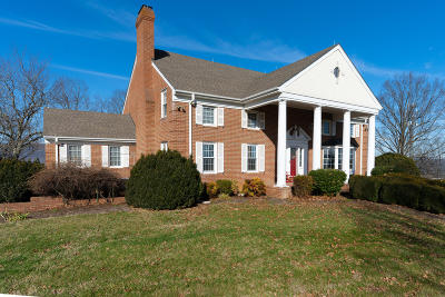 Fincastle Single Family Home For Sale: 229 Grove Hill Rd
