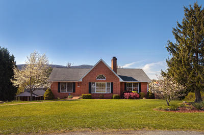 Roanoke Single Family Home For Sale: 4666 Red Barn Ln