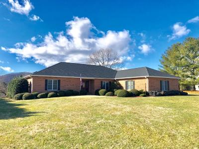 Botetourt County Single Family Home For Sale: 147 Wyndermere Dr