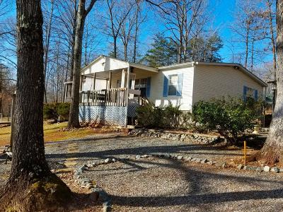 Bedford County Single Family Home For Sale: 306 Snug Harbor Trl