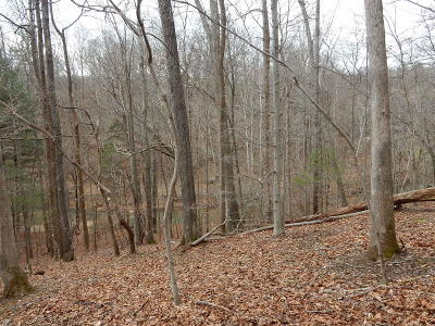 Roanoke City County Residential Lots & Land For Sale: Brookridge Rd