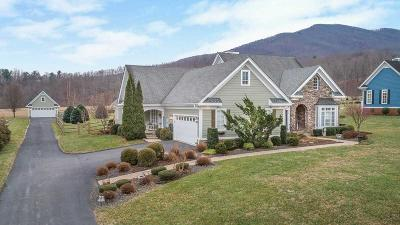 Franklin County Single Family Home For Sale: 85 Apple Rd