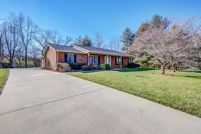 Roanoke Single Family Home For Sale: 3180 Garst Cabin Dr