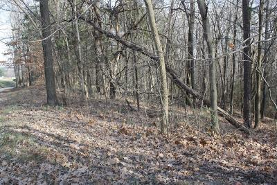 Bedford County Residential Lots & Land For Sale: Union Church Rd