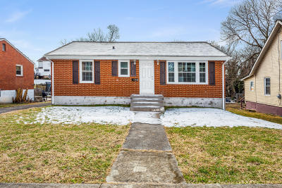 Roanoke City County Single Family Home For Sale: 2506 Delaware Ave NW