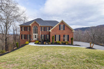 Roanoke County Single Family Home For Sale: 7741 Autumn Park Dr