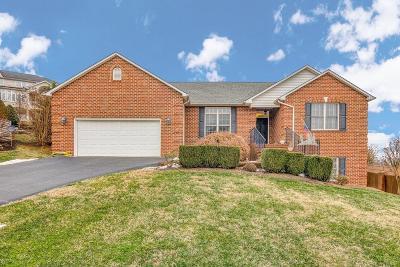 Salem Single Family Home For Sale: 902 Saddle Dr