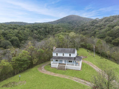 Botetourt County Single Family Home For Sale: 1020 Docs Way