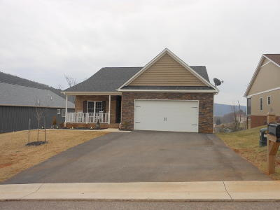 Single Family Home For Sale: Lot 25 Teresa Ln