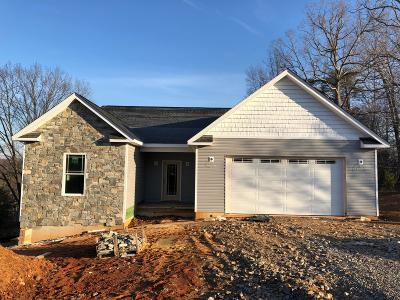 Franklin County Single Family Home For Sale: 420 North Church Dr