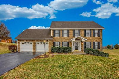 Botetourt County Single Family Home For Sale: 74 Homestead Cir