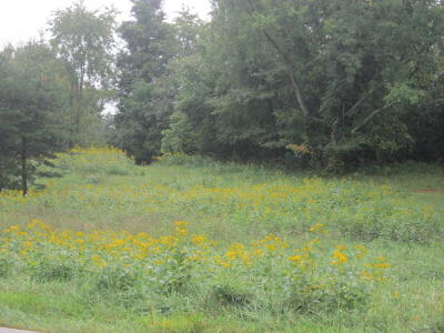Salem Residential Lots & Land For Sale: 1232 North Mill Rd