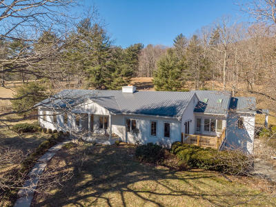 Roanoke County Single Family Home For Sale: 8819 Newport Rd