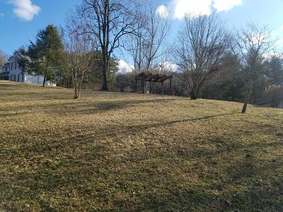 Roanoke County Residential Lots & Land For Sale: 4073 Horsepen Mountain Dr