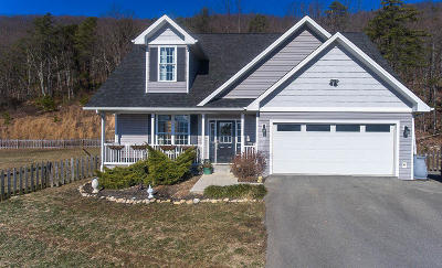 Blue Ridge VA Single Family Home For Sale: $324,950