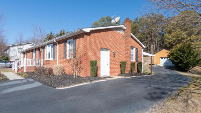Troutville Single Family Home For Sale: 1616 Haymakertown Rd
