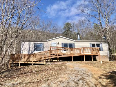 Botetourt County Single Family Home For Sale: 1174 Purgatory Mountain Rd