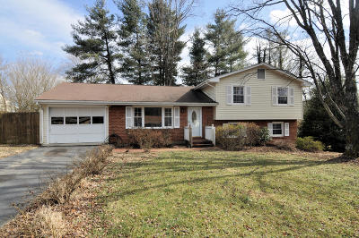 Roanoke Single Family Home For Sale: 3728 Red Bird Cir