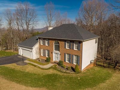 Roanoke County Single Family Home For Sale: 531 Downing St