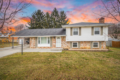 Roanoke County Single Family Home For Sale: 6319 Bunker Ln