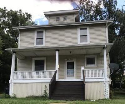 Roanoke Single Family Home For Sale: 813 Dent St SE