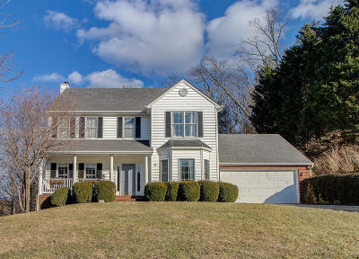 Roanoke County Single Family Home For Sale: 5725 Spring Meadow Ct