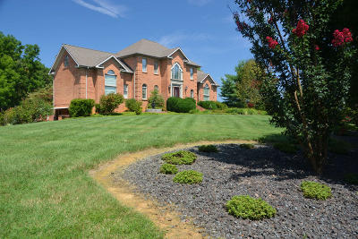 Fincastle Single Family Home For Sale: 419 Plantation Dr