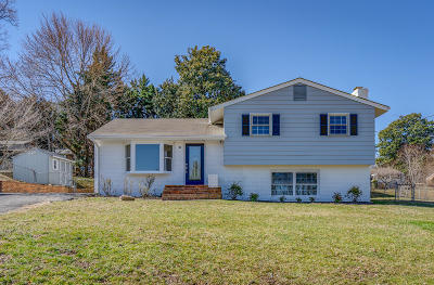 Roanoke County Single Family Home For Sale: 4206 Sharolyn Dr