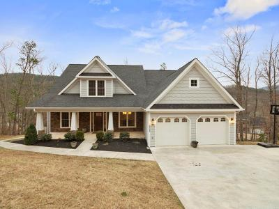 Roanoke County Single Family Home For Sale: 4225 Campbell View Ln
