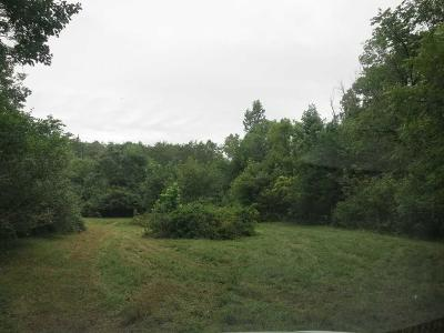 Residential Lots & Land For Sale: Long View Ln