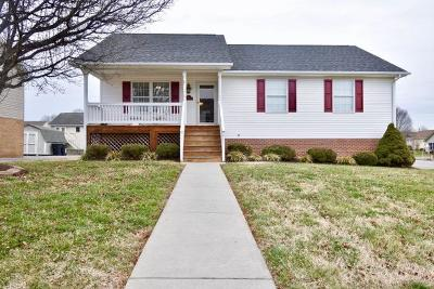 Roanoke County Single Family Home For Sale: 801 Harmon Cir
