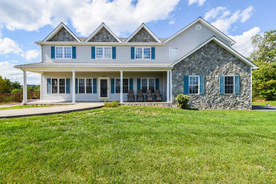 Bedford County Single Family Home For Sale: 3677 Bluewater Dr
