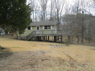 Bedford County Single Family Home For Sale: 2240 Buccaneer Rd